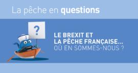 Le Brexit et la pêche française : où en sommes-nous?